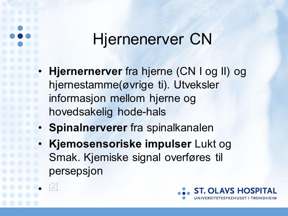 Deltar i opplevelsen av smak og lukt CN 1 Olfactorius CN V Trigeminus CN VII Facialis CN IX Glossopharyngeus CN X Vagus Over 90% av smaksopplevelsen betinger fungerende luktenerve CN1