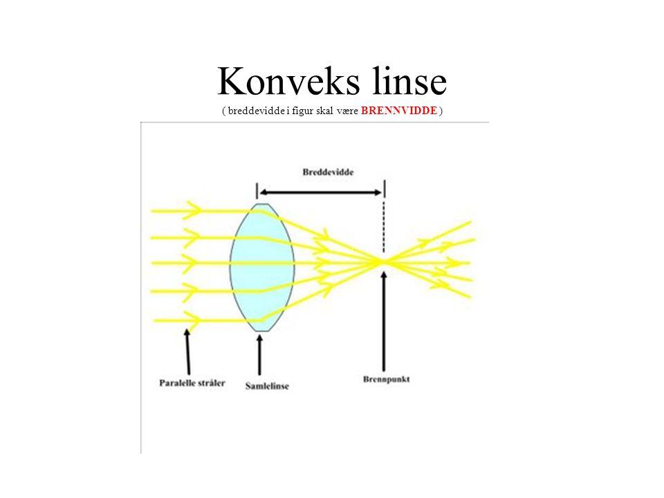 Konveks linse ( breddevidde i figur skal være BRENNVIDDE )