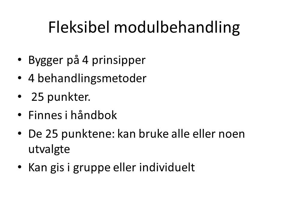 Fleksibel modulbehandling Bygger på 4 prinsipper 4 behandlingsmetoder 25 punkter. Finnes i håndbok De 25 punktene: kan bruke alle eller noen utvalgte