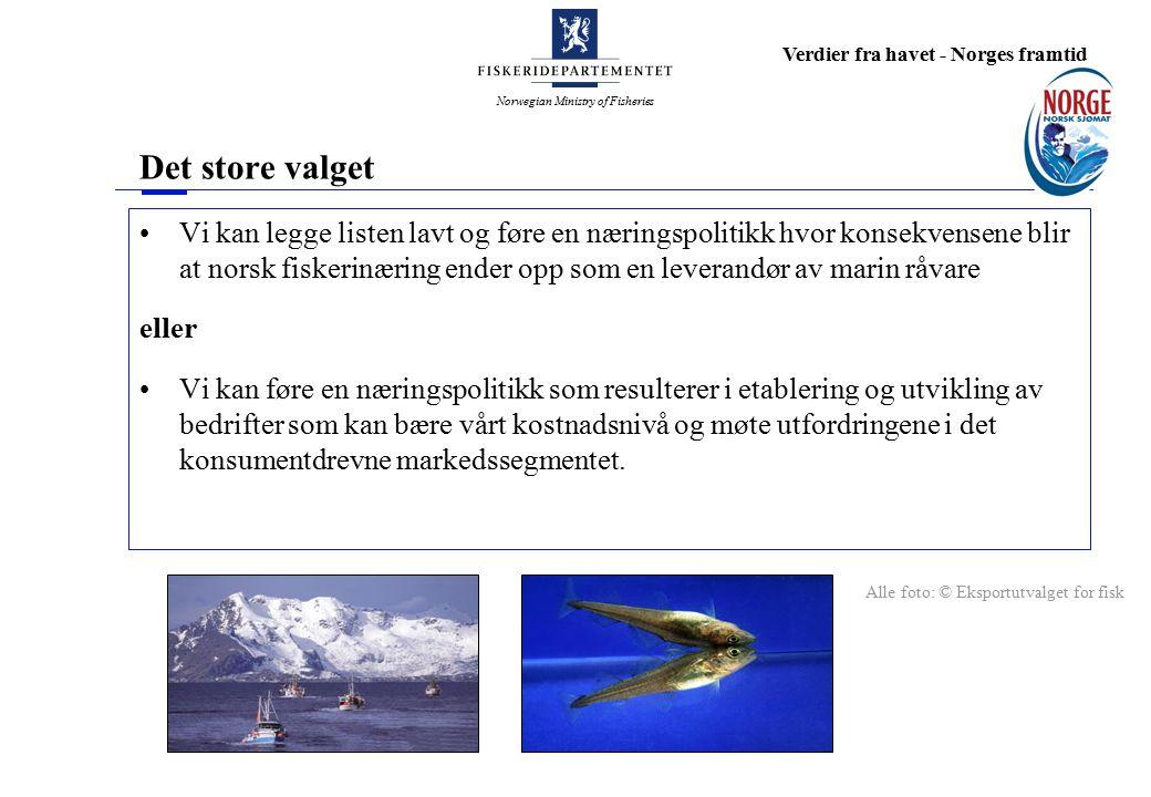 Norwegian Ministry of Fisheries Verdier fra havet - Norges framtid Kapasitetstilpasning Bidrar driftsordningen til å gjøre hverdagen enklere og mer lønnsom.