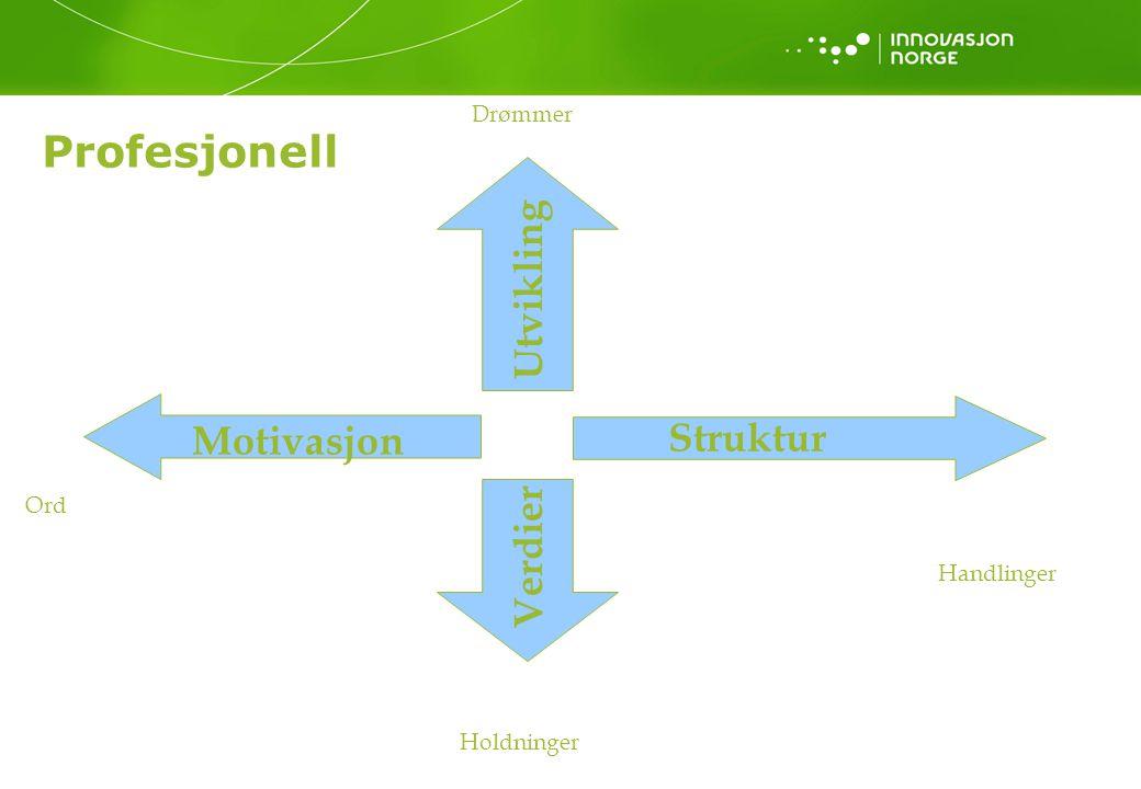 Profesjonell Verdier Utvikling Struktur Motivasjon Ord Handlinger Holdninger Drømmer