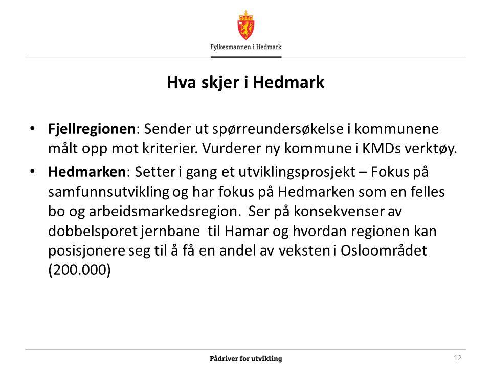 Hva skjer i Hedmark Fjellregionen: Sender ut spørreundersøkelse i kommunene målt opp mot kriterier.