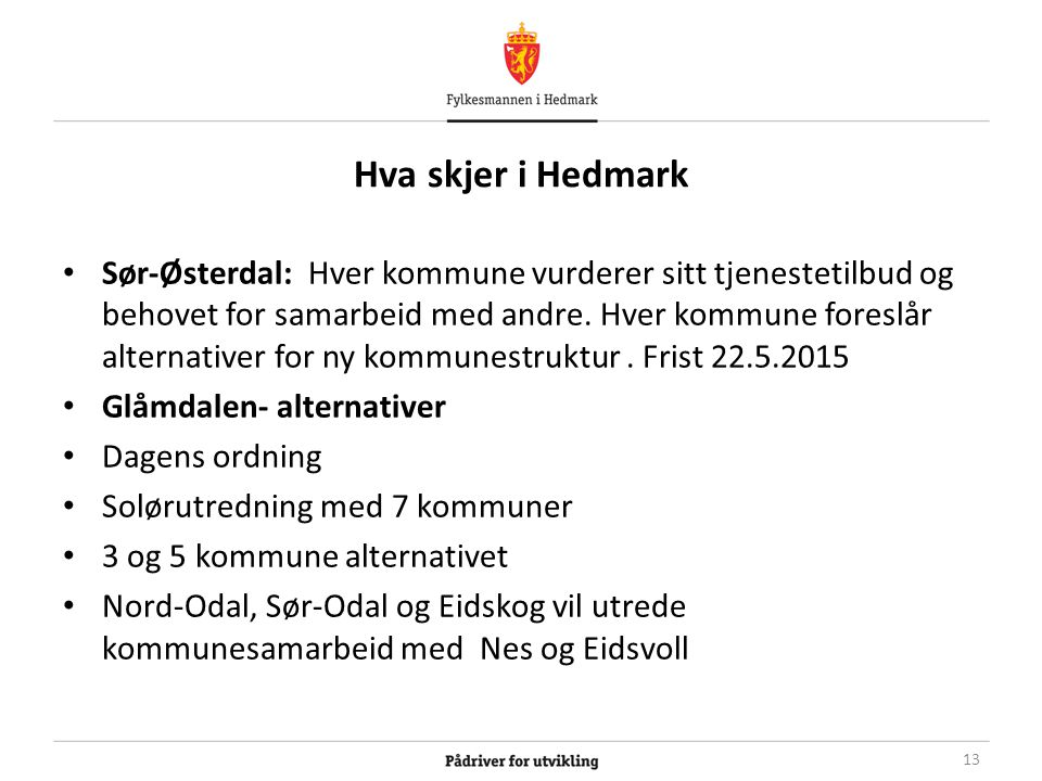 Hva skjer i Hedmark Sør-Østerdal: Hver kommune vurderer sitt tjenestetilbud og behovet for samarbeid med andre.