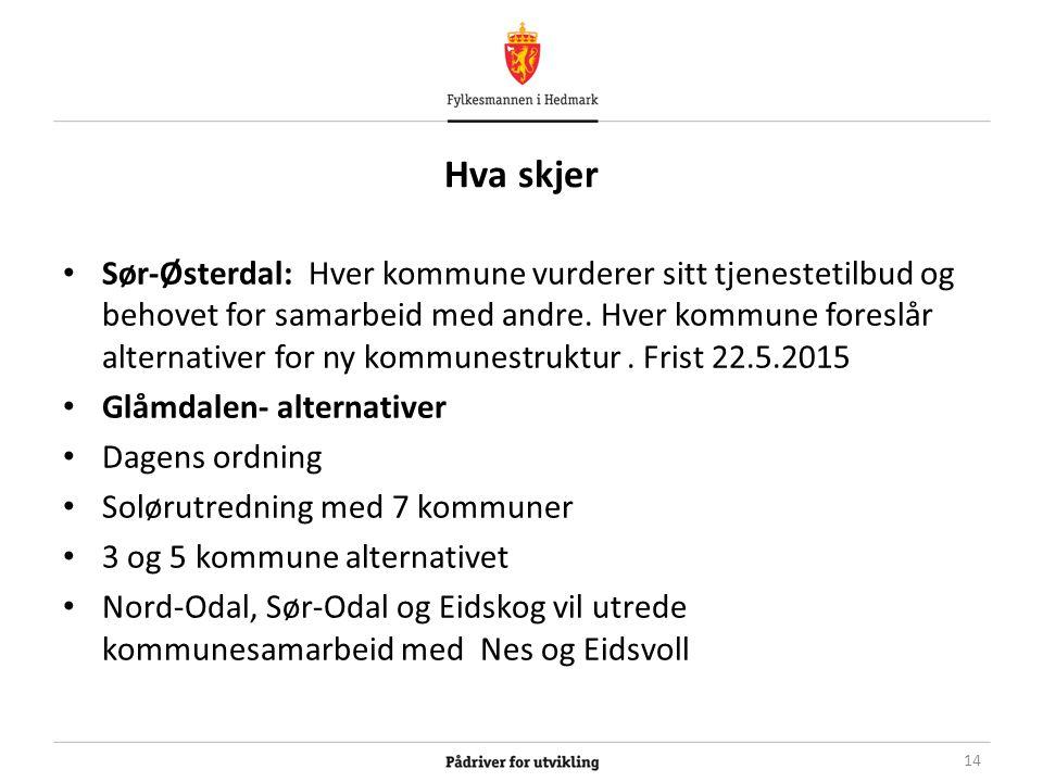 Hva skjer Sør-Østerdal: Hver kommune vurderer sitt tjenestetilbud og behovet for samarbeid med andre.