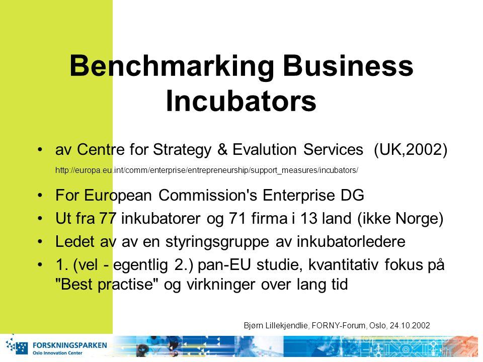 Benchmarking Business Incubators av Centre for Strategy & Evalution Services (UK,2002) http://europa.eu.int/comm/enterprise/entrepreneurship/support_measures/incubators/ For European Commission s Enterprise DG Ut fra 77 inkubatorer og 71 firma i 13 land (ikke Norge) Ledet av av en styringsgruppe av inkubatorledere 1.