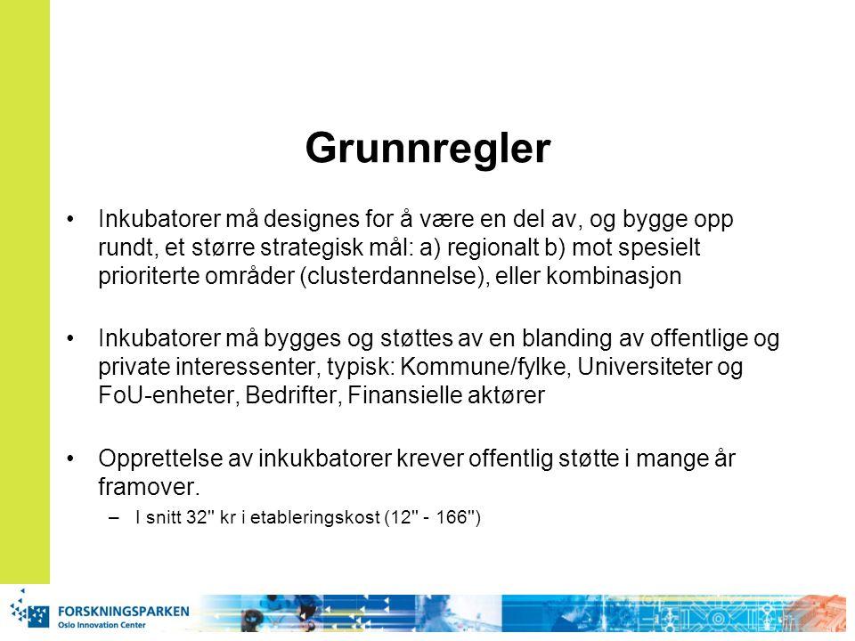 Grunnregler Inkubatorer må designes for å være en del av, og bygge opp rundt, et større strategisk mål: a) regionalt b) mot spesielt prioriterte områd