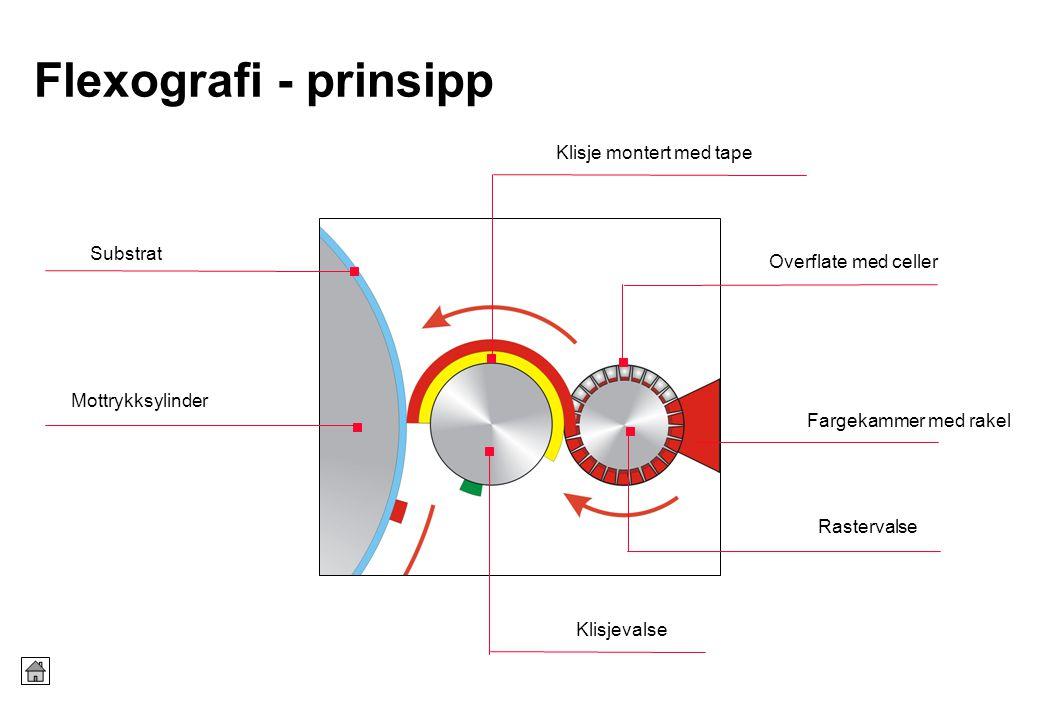 Flexografi - prinsipp Rastervalse Fargekammer med rakel Klisje montert med tape Mottrykksylinder Klisjevalse Overflate med celler Substrat