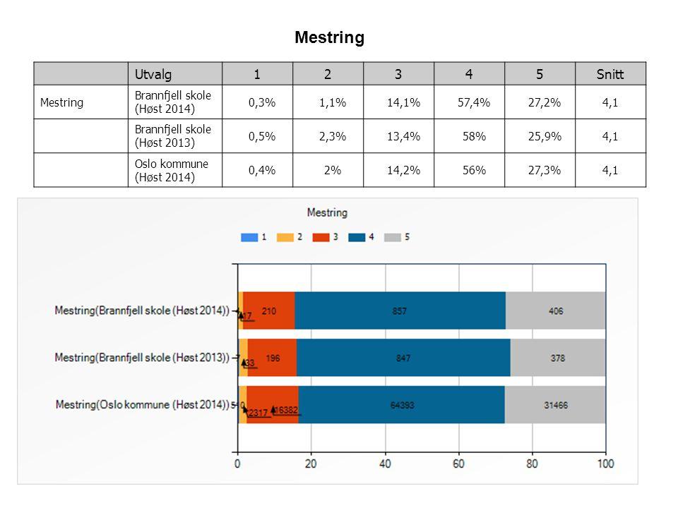 7 Utvalg12345Snitt Mestring Brannfjell skole (Høst 2014) 0,3% 1,1% 14,1% 57,4% 27,2%4,1 Brannfjell skole (Høst 2013) 0,5% 2,3% 13,4% 58% 25,9%4,1 Oslo