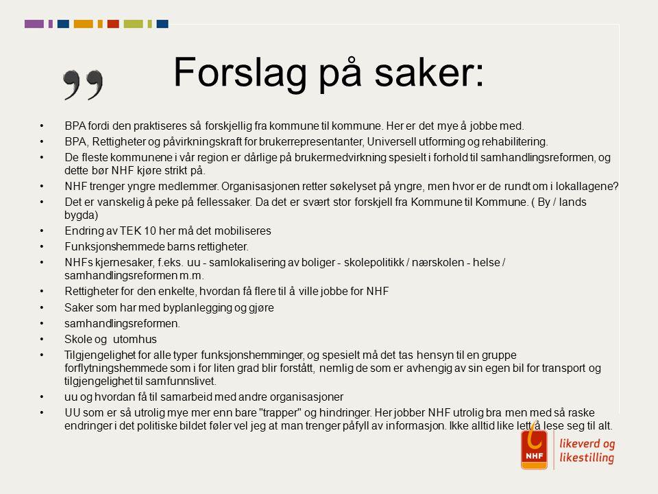Forslag på saker: BPA fordi den praktiseres så forskjellig fra kommune til kommune.