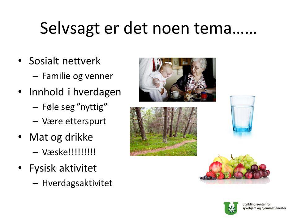 """Selvsagt er det noen tema…… Sosialt nettverk – Familie og venner Innhold i hverdagen – Føle seg """"nyttig"""" – Være etterspurt Mat og drikke – Væske!!!!!!"""