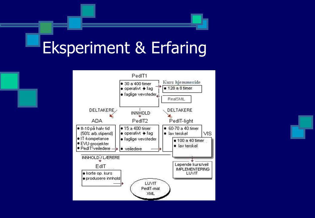 Eksperiment & Erfaring