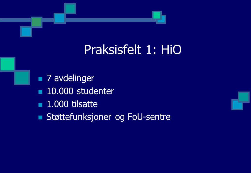 Praksisfelt 2: Europa Nivåer: 3+2+3 (B+M+Ph.D) Karakterer: A - F Marked Profesjonelt Forskning
