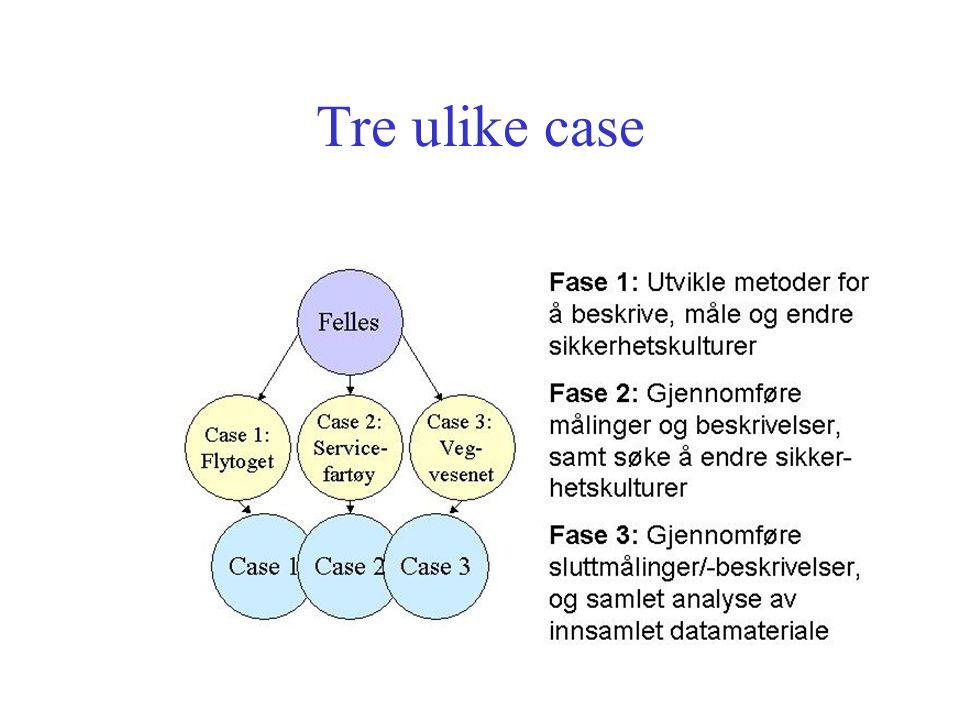 Metoder Litteraturstudier Kvantitative metoder (måleinstrumenter, spørreundersøkelser) Kvalitative metoder: –Aksjonsforskning -Intervjuer -Observasjoner -søkekonferanser