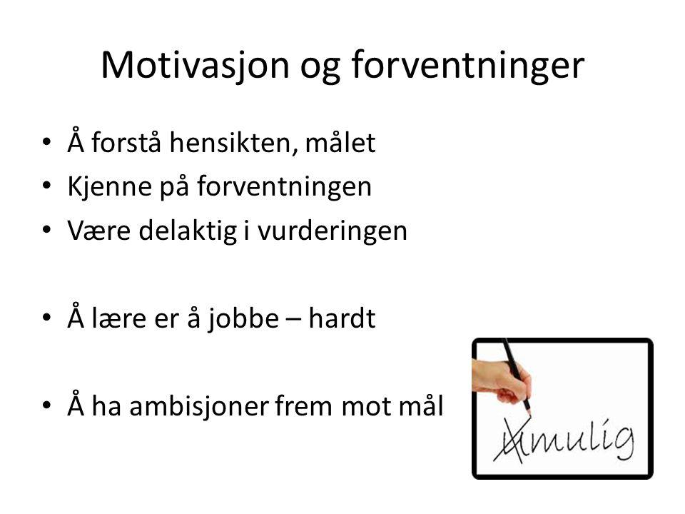 Motivasjon og forventninger Å forstå hensikten, målet Kjenne på forventningen Være delaktig i vurderingen Å lære er å jobbe – hardt Å ha ambisjoner frem mot mål