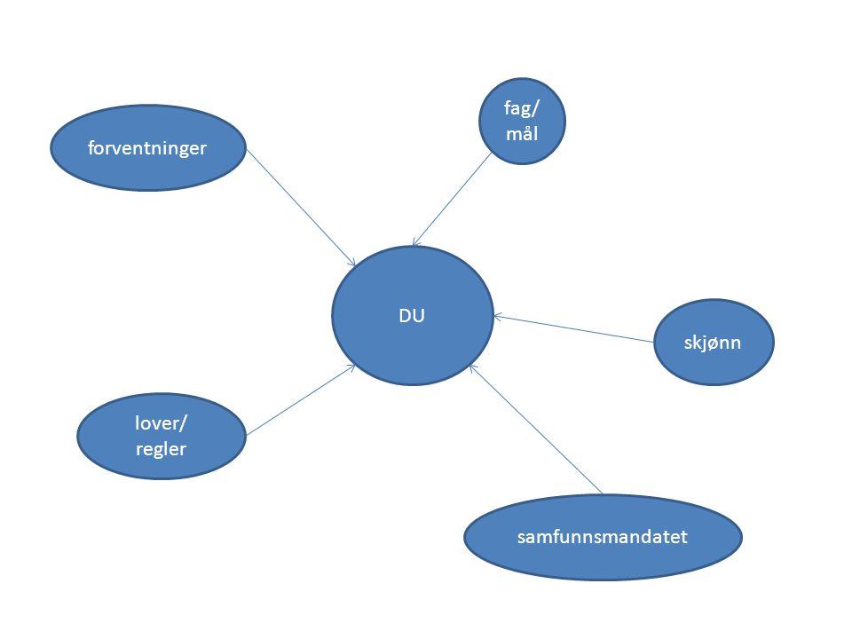 DU forventninger lover/ regler fag/ mål skjønn samfunnsmandatet