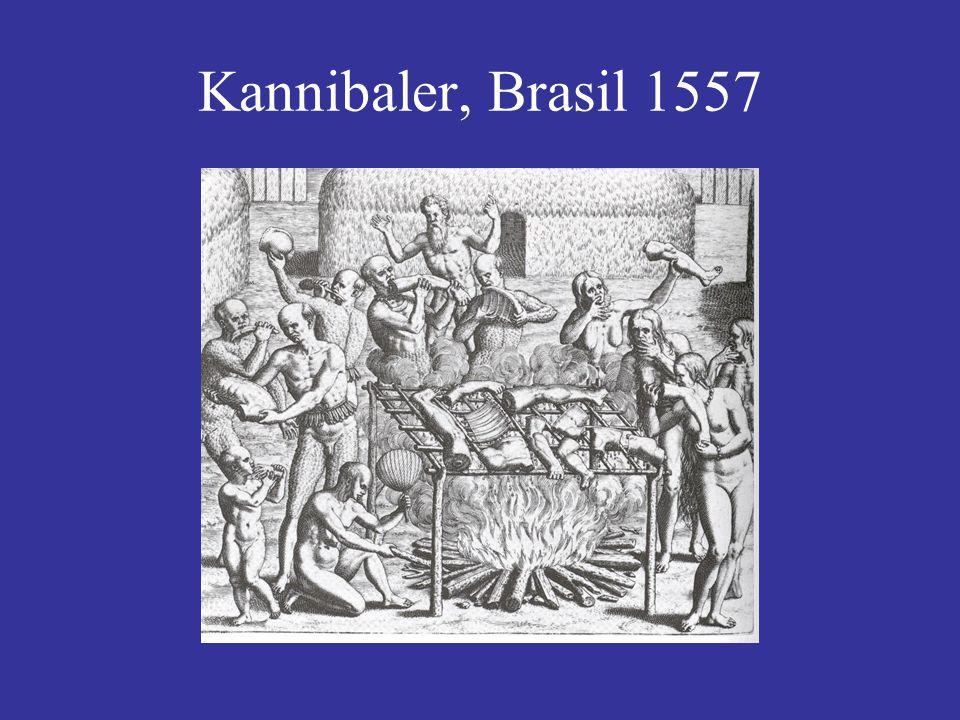 Kannibaler, Brasil 1557
