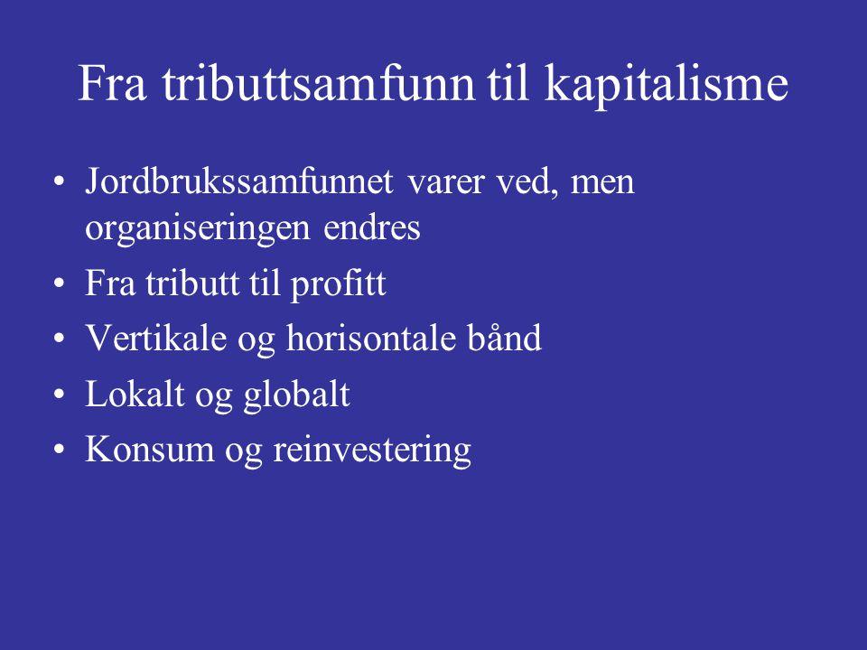 Fra tributtsamfunn til kapitalisme Jordbrukssamfunnet varer ved, men organiseringen endres Fra tributt til profitt Vertikale og horisontale bånd Lokal