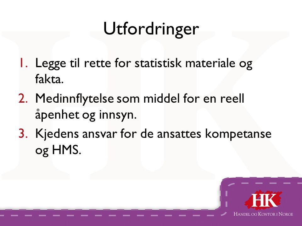 Utfordringer 1.Legge til rette for statistisk materiale og fakta.