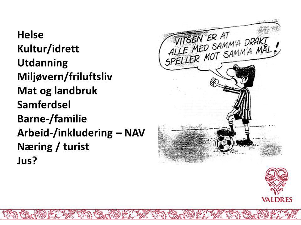 Helse Kultur/idrett Utdanning Miljøvern/friluftsliv Mat og landbruk Samferdsel Barne-/familie Arbeid-/inkludering – NAV Næring / turist Jus?