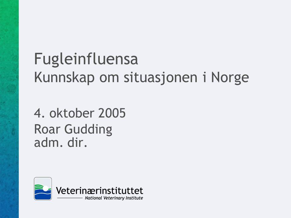 Fugleinfluensa Kunnskap om situasjonen i Norge 4. oktober 2005 Roar Gudding adm. dir.