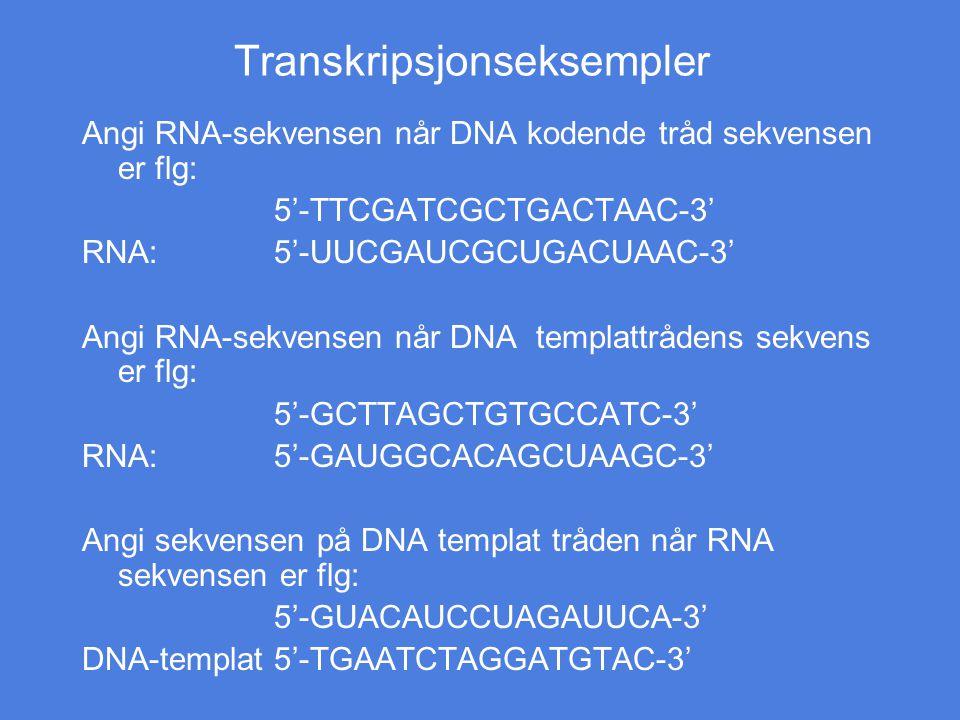 Transkripsjonseksempler Angi RNA-sekvensen når DNA kodende tråd sekvensen er flg: 5'-TTCGATCGCTGACTAAC-3' RNA:5'-UUCGAUCGCUGACUAAC-3' Angi RNA-sekvens