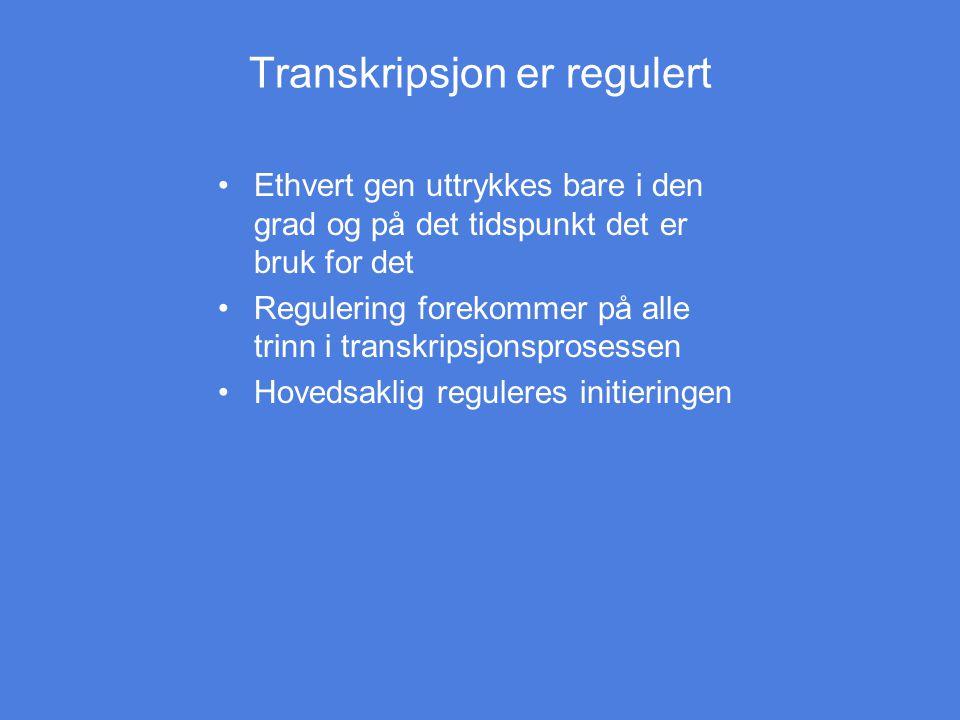 Transkripsjon er regulert Ethvert gen uttrykkes bare i den grad og på det tidspunkt det er bruk for det Regulering forekommer på alle trinn i transkri