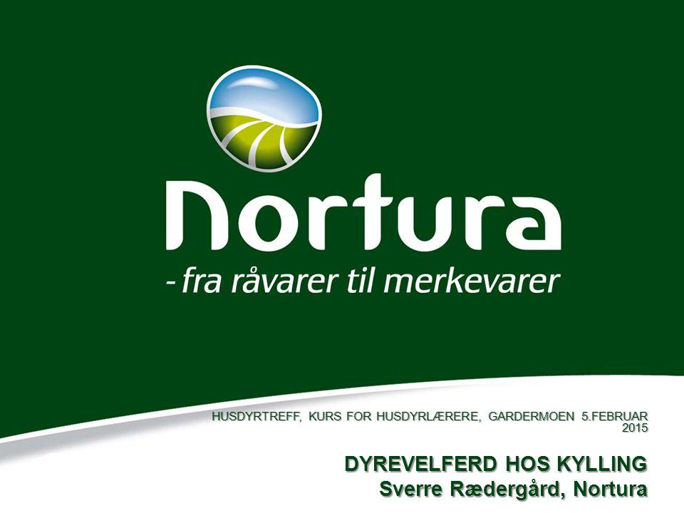 DYREVELFERD HOS KYLLING Sverre Rædergård, Nortura HUSDYRTREFF, KURS FOR HUSDYRLÆRERE, GARDERMOEN 5.FEBRUAR 2015