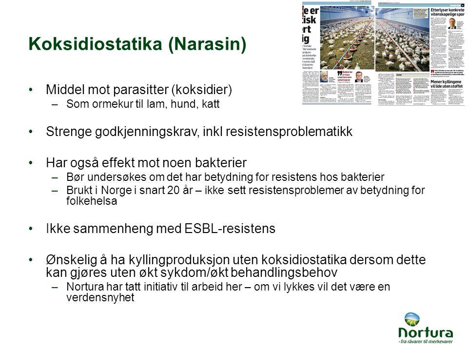 Koksidiostatika (Narasin) Middel mot parasitter (koksidier) –Som ormekur til lam, hund, katt Strenge godkjenningskrav, inkl resistensproblematikk Har også effekt mot noen bakterier –Bør undersøkes om det har betydning for resistens hos bakterier –Brukt i Norge i snart 20 år – ikke sett resistensproblemer av betydning for folkehelsa Ikke sammenheng med ESBL-resistens Ønskelig å ha kyllingproduksjon uten koksidiostatika dersom dette kan gjøres uten økt sykdom/økt behandlingsbehov –Nortura har tatt initiativ til arbeid her – om vi lykkes vil det være en verdensnyhet