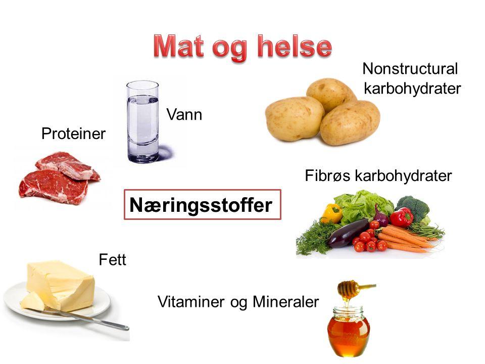 Næringsstoffer Proteiner Nonstructural karbohydrater Fibrøs karbohydrater Fett Vitaminer og Mineraler Vann