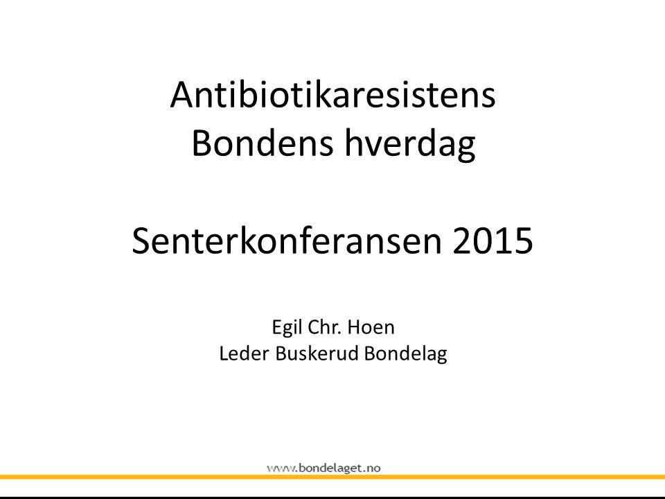 Antibiotikaresistens Bondens hverdag Senterkonferansen 2015 Egil Chr. Hoen Leder Buskerud Bondelag