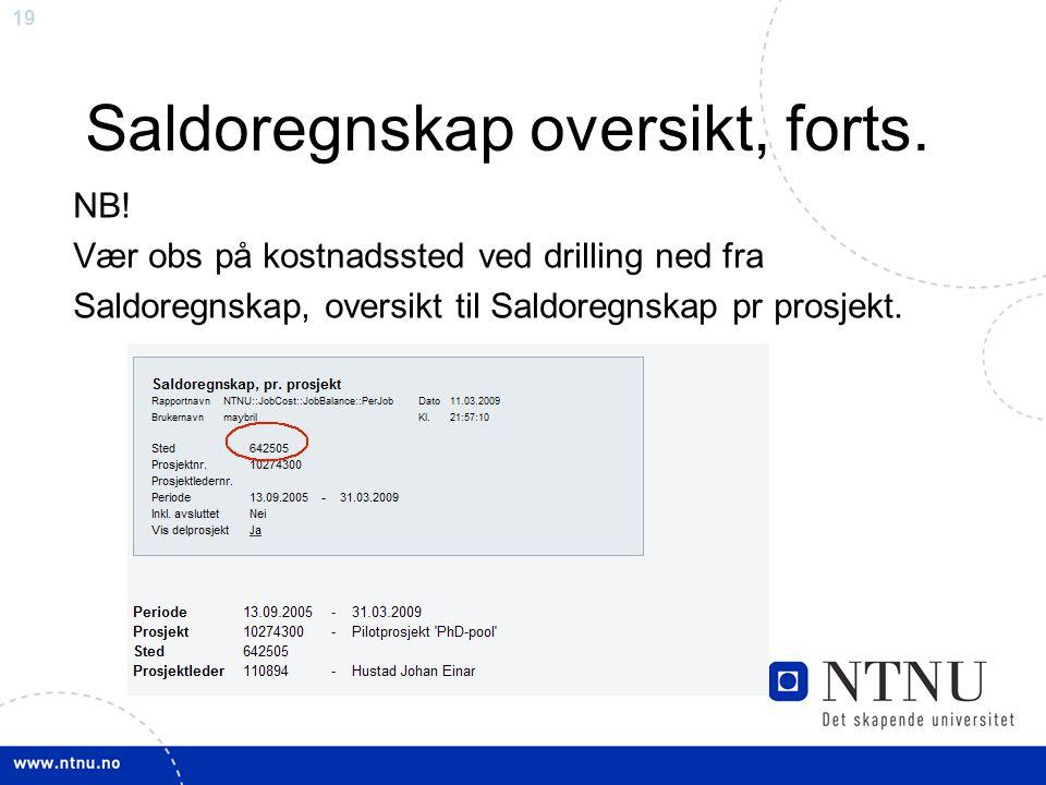19 Saldoregnskap oversikt, forts.NB.