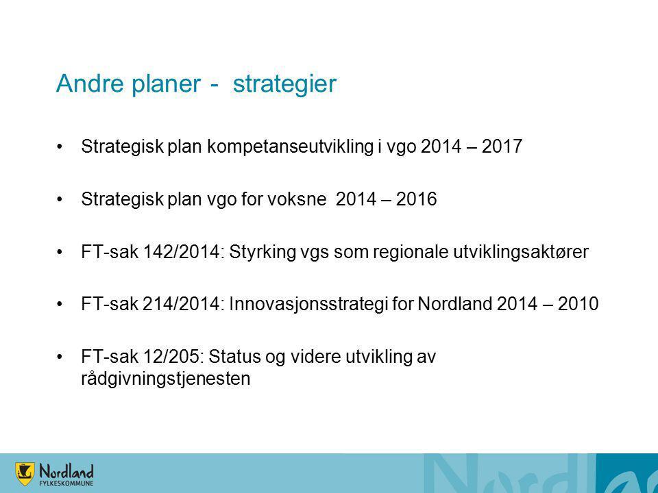 Andre planer - strategier Strategisk plan kompetanseutvikling i vgo 2014 – 2017 Strategisk plan vgo for voksne 2014 – 2016 FT-sak 142/2014: Styrking v