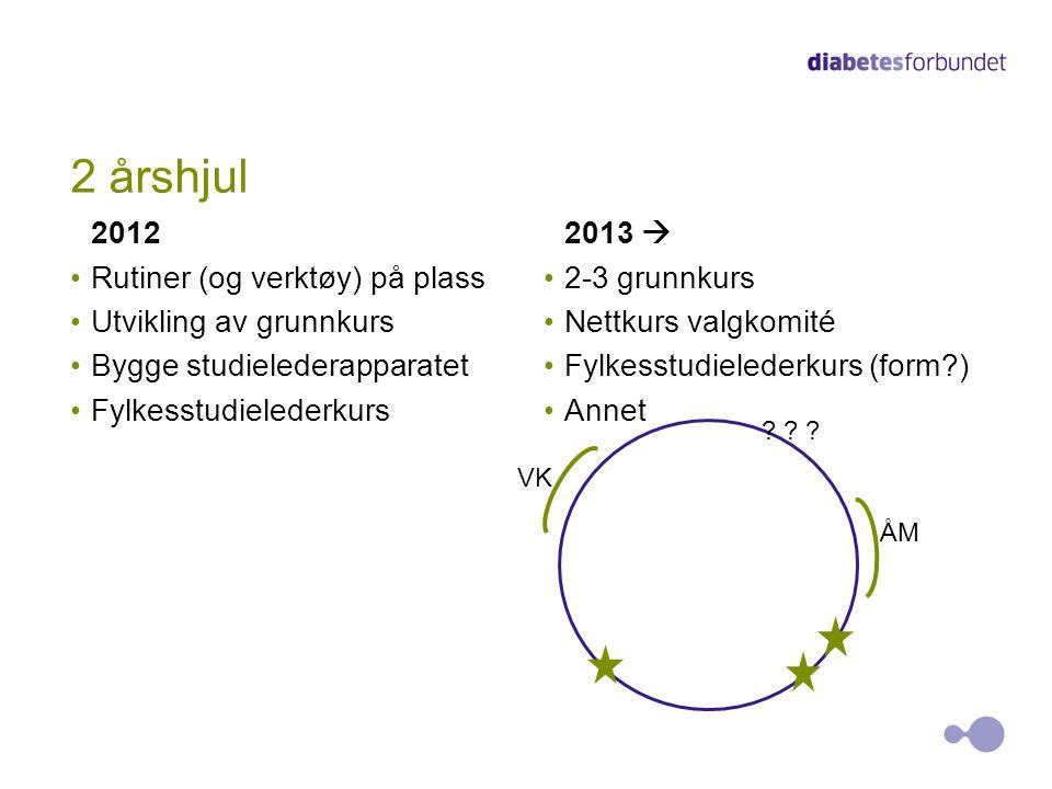 2 årshjul 2012 Rutiner (og verktøy) på plass Utvikling av grunnkurs Bygge studielederapparatet Fylkesstudielederkurs 2013  2-3 grunnkurs Nettkurs val
