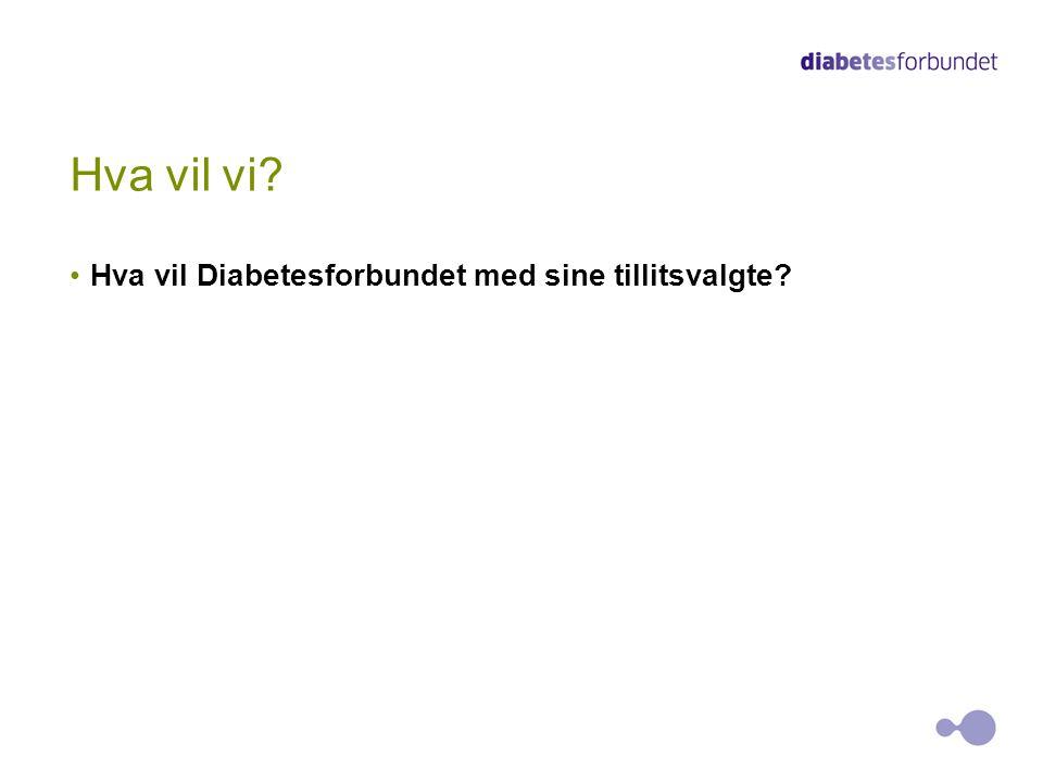 Hva vil vi? Hva vil Diabetesforbundet med sine tillitsvalgte?