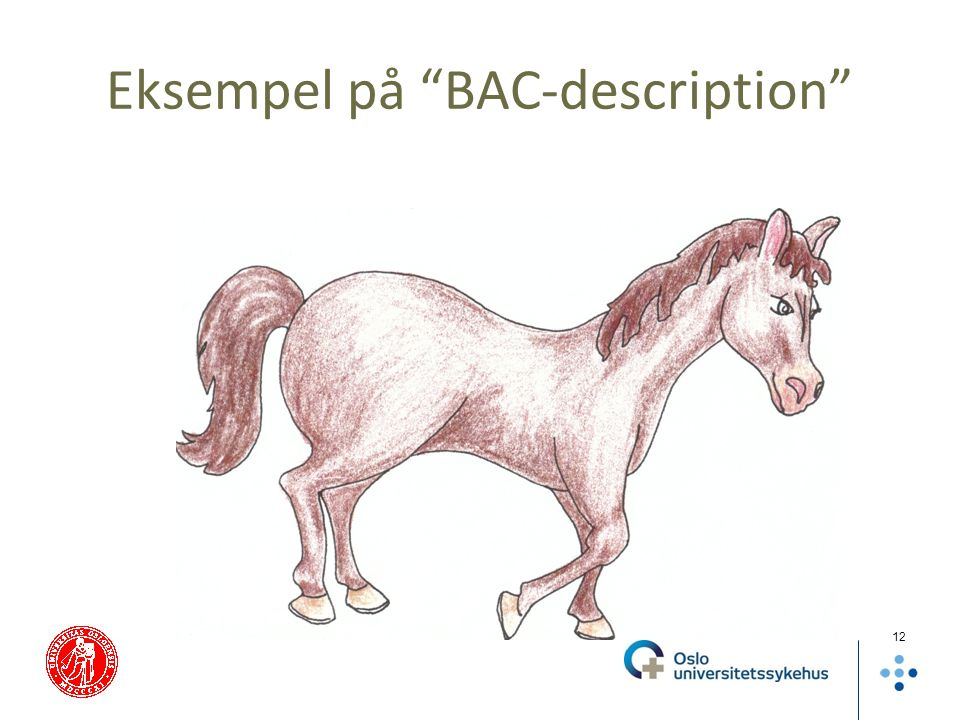 "Eksempel på ""BAC-description"" 12"