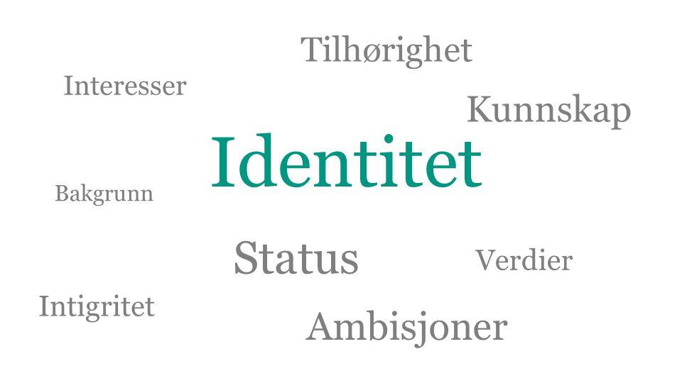 Identitet Status Tilhørighet Interesser Bakgrunn Verdier Kunnskap Intigritet Ambisjoner