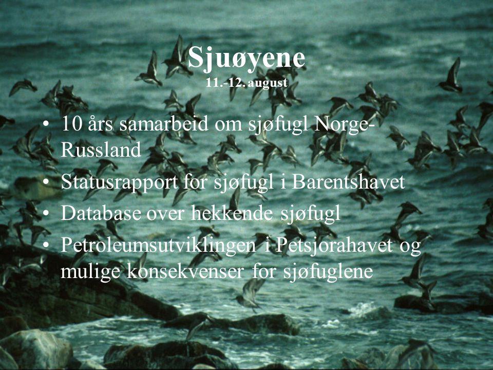 Sjuøyene 11.-12. august 10 års samarbeid om sjøfugl Norge- Russland Statusrapport for sjøfugl i Barentshavet Database over hekkende sjøfugl Petroleums