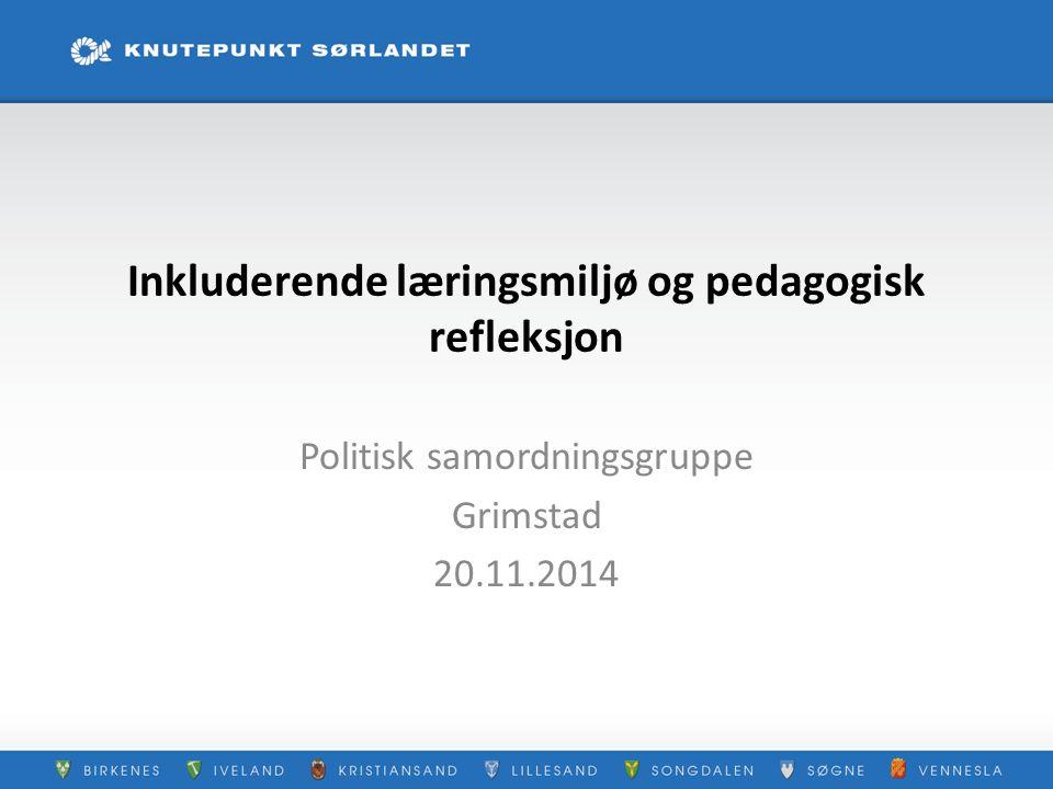 Inkluderende læringsmiljø og pedagogisk refleksjon Politisk samordningsgruppe Grimstad 20.11.2014