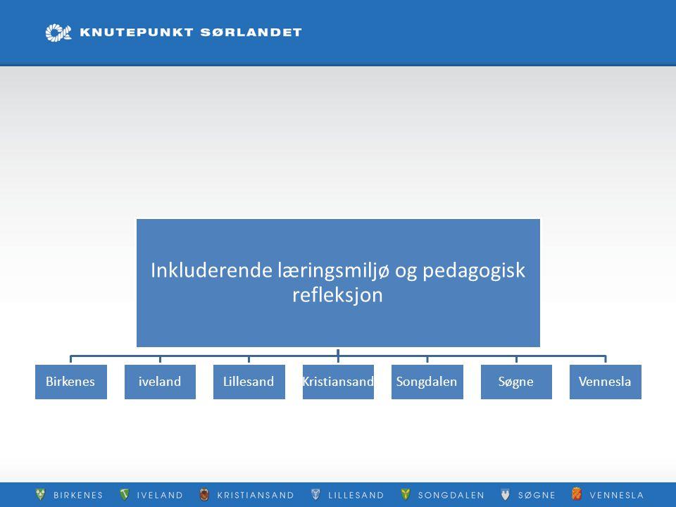 Inkluderende læringsmiljø og pedagogisk refleksjon BirkenesivelandLillesandKristiansandSongdalenSøgneVennesla
