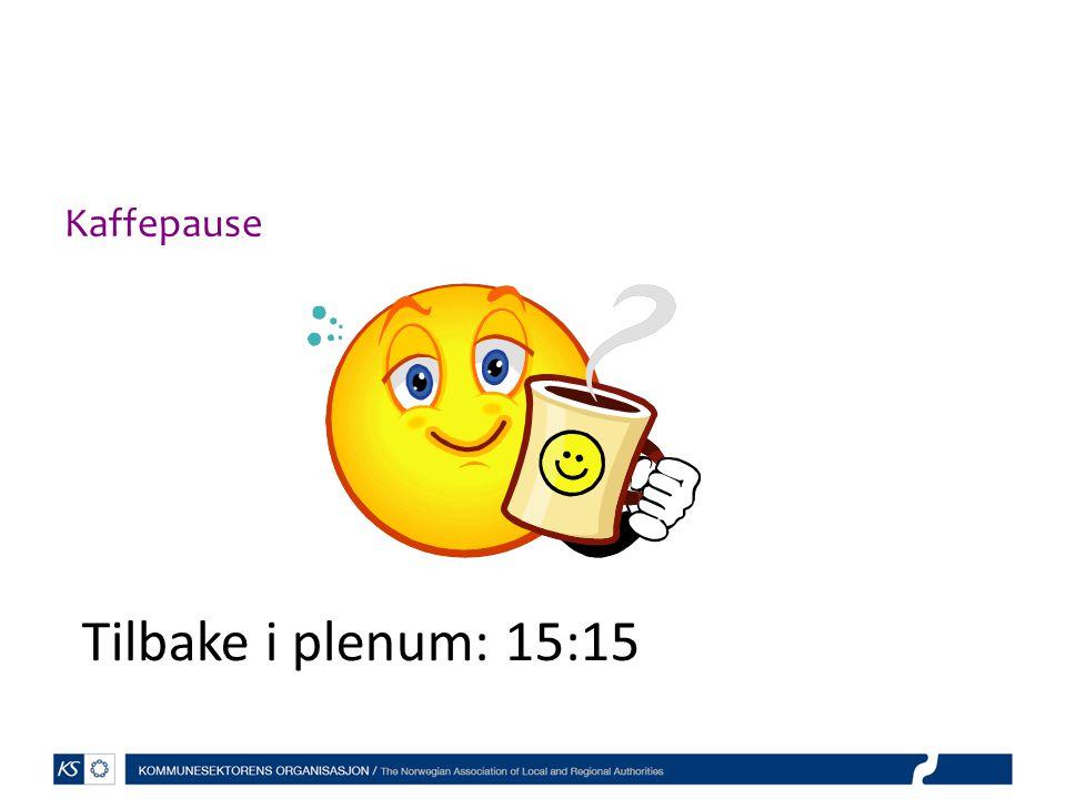 Kaffepause Tilbake i plenum: 15:15