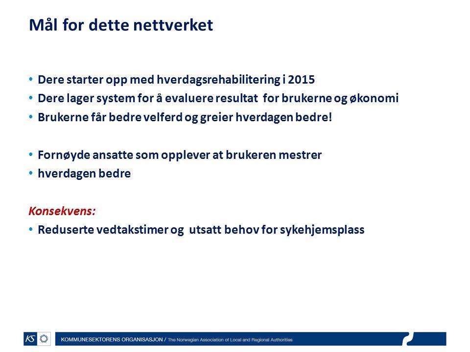 EffektiviseringsNettverkene 2011 Hvordan gjør vi det.