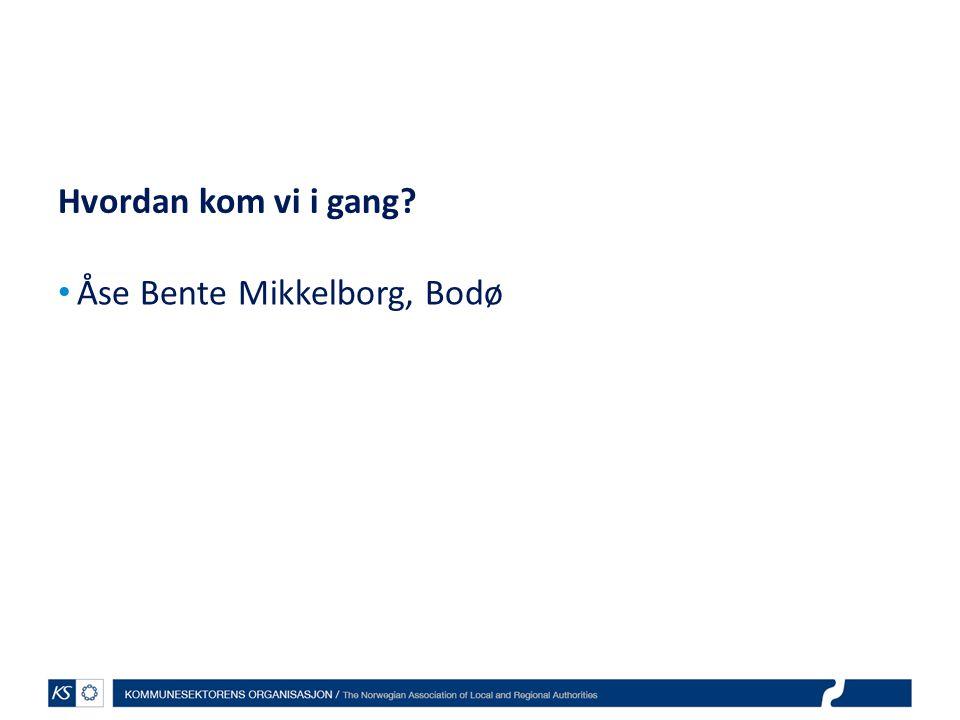 EffektiviseringsNettverkene 2011 Hvordan kom vi i gang? Åse Bente Mikkelborg, Bodø
