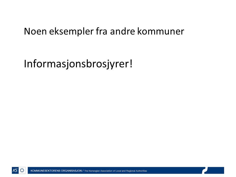 Noen eksempler fra andre kommuner Informasjonsbrosjyrer!