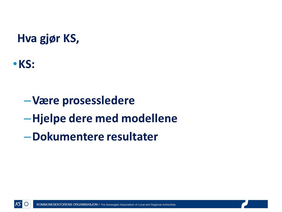 EffektiviseringsNettverkene 2011 Hva gjør KS, KS: – Være prosessledere – Hjelpe dere med modellene – Dokumentere resultater