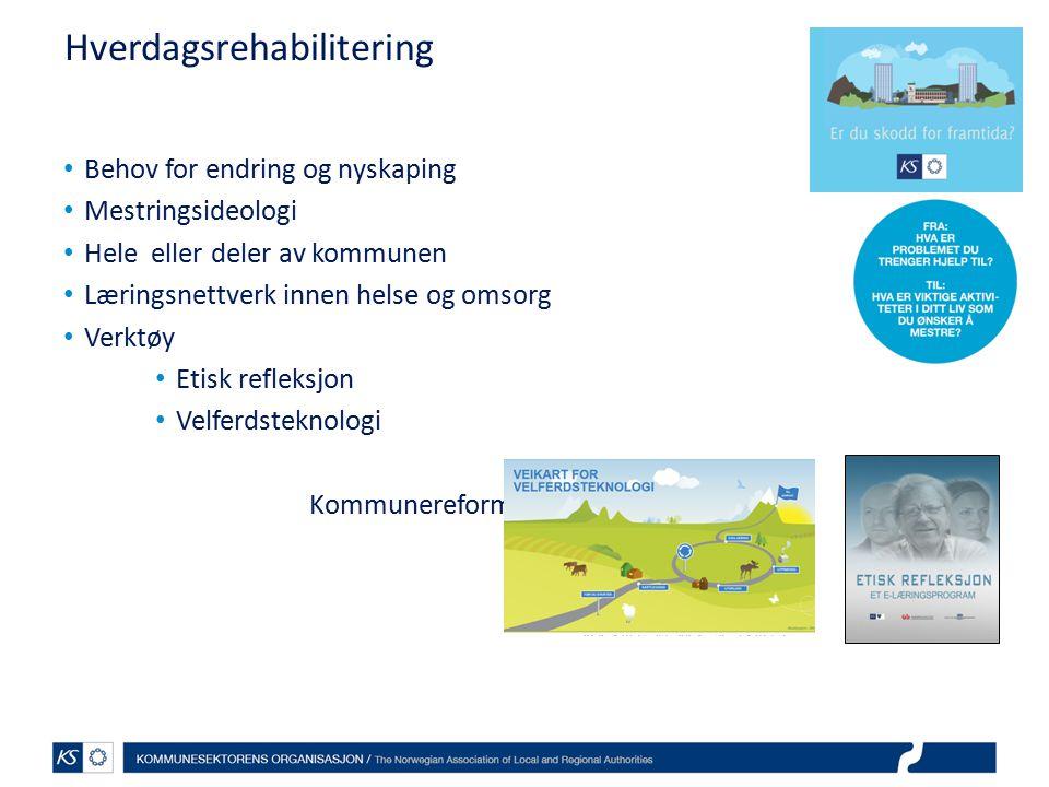EffektiviseringsNettverkene 2011 hva skal dere gjøre.