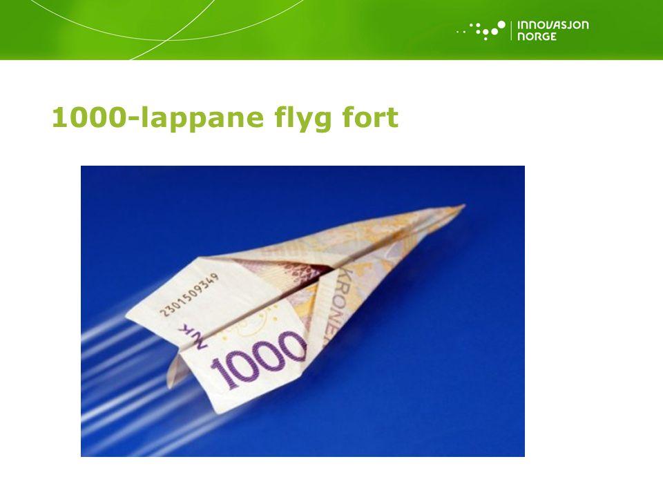 1000-lappane flyg fort