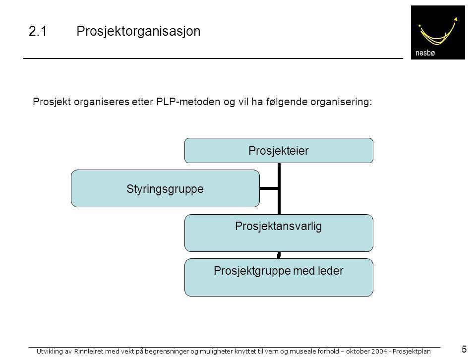 Utvikling av Rinnleiret med vekt på begrensninger og muligheter knyttet til vern og museale forhold – oktober 2004 - Prosjektplan 16 Aktivitet4142434445464748495051 1 Oppsummering av tidl.