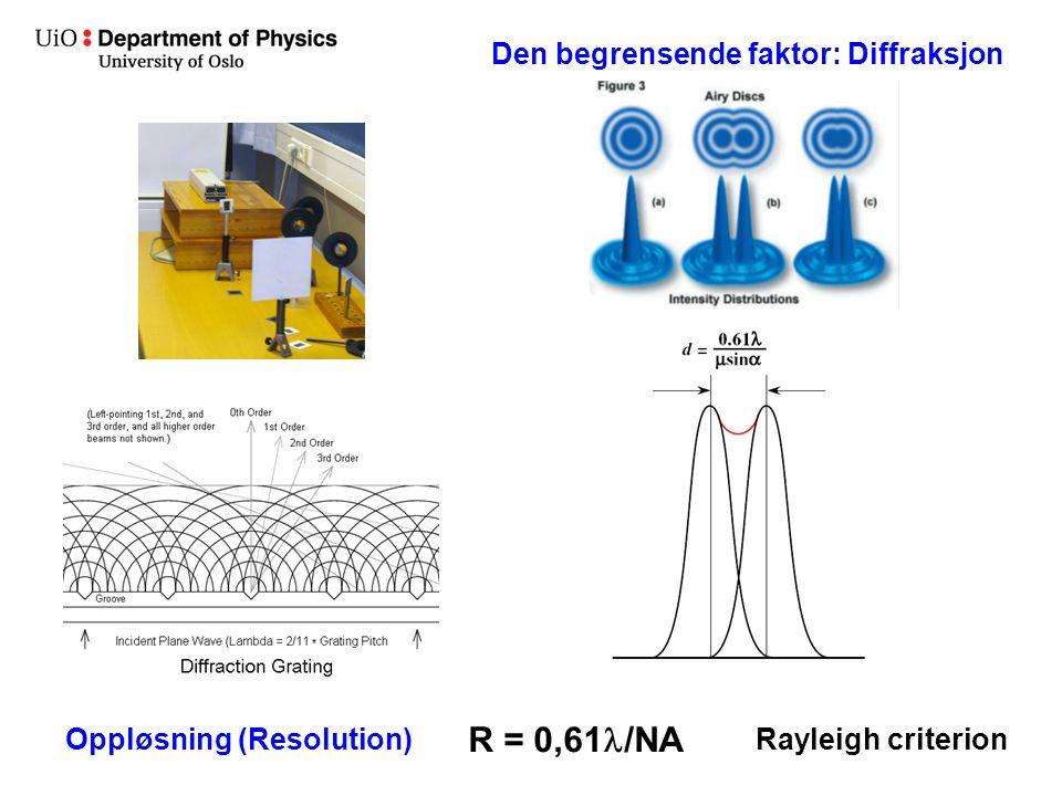 Den begrensende faktor: Diffraksjon R = 0,61 /NA Oppløsning (Resolution)Rayleigh criterion