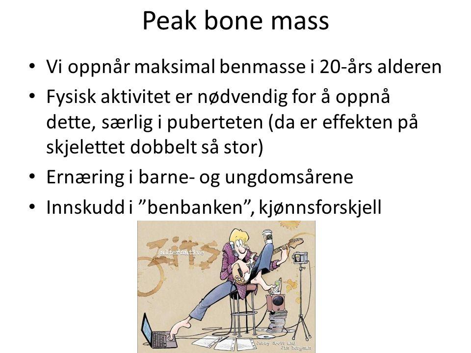 Peak bone mass Vi oppnår maksimal benmasse i 20-års alderen Fysisk aktivitet er nødvendig for å oppnå dette, særlig i puberteten (da er effekten på sk