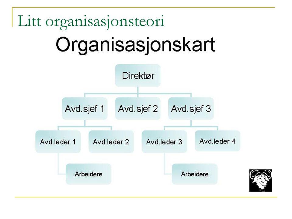 Litt organisasjonsteori